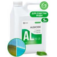 Альгицид для бассейнов CRYSPOOL Algicide (канистра 5 кг)